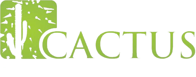Why Cactus? | Independent Financial Advice in Cheltenham and the South West | Cactus Financial Planning